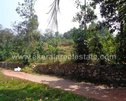 Mangalapuram 60 cent plots for sale at Mangalapuram properties trivandrum