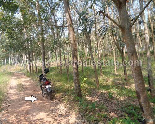 Chenkottukonam plot for sale at Chenkottukonam properties thiruvananthapuram kerala