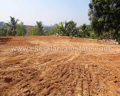 kerala real estate Kallayam 4 cent residential land sale in Kallayam trivandrum