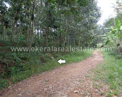 residential house plot for sale at Thonnakkal thiruvananthapuramresidential house plot for sale at Thonnakkal thiruvananthapuram kerala real estate