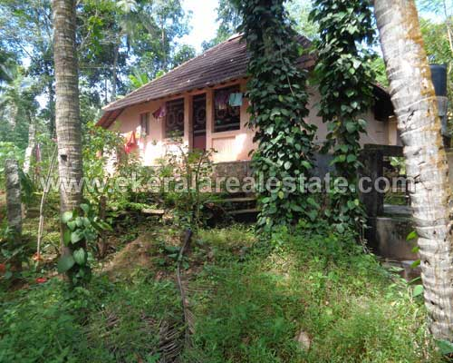 old house and 24 cent square plot for sale at Kachani thiruvananthapuram kerala real estate