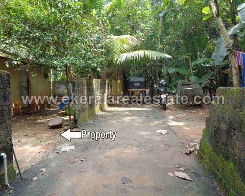 Thirumala real estate properties Thirumala 4 cent residential land plots for sale