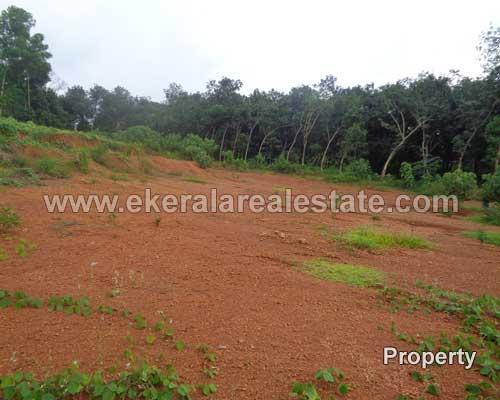 Thachottukavu Peyad real estate properties Thachottukavu Peyad land plots sale