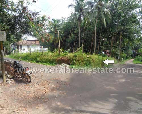 Peyad real estate properties Peyad Two side Tar Road residential land plots sale