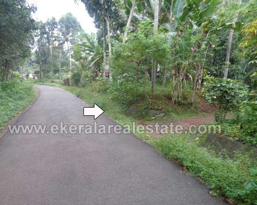 Pirappancode real estate trivandrum Pirappancode Old House and 45 cent plot for sale