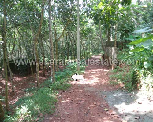 Balaramapuram 40 cent residential land plot for sale kerala real estate properties Balaramapuram