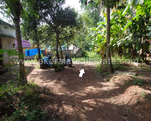 Trivandrum mamom residential land 19 cent for sale kerala for Land for sale in kerala