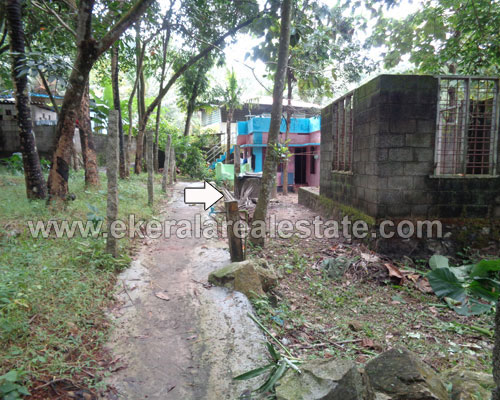 trivandrum Vilappilsala Peyad 5 cent residential land for sale kerala real estate properties Vilappilsala Peyad