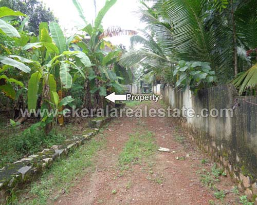 trivandrum Kallayam 6 cent residential land plot for sale kerala real estate properties Kallayam