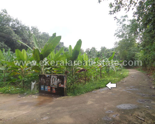 kerala real estate Kilimanoor 34 cent house plot for sale in Kilimanoor