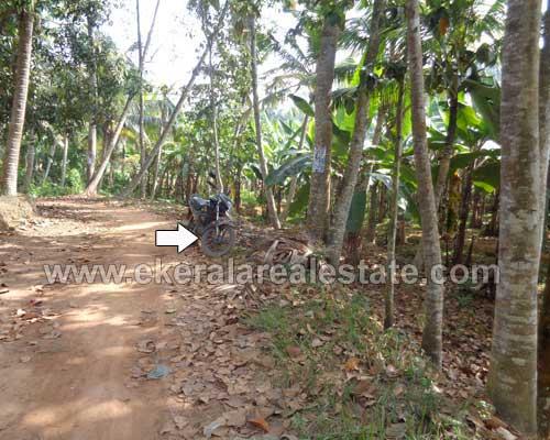 farm Land for sale in Neyyattinkara thiruvananthapuram properties in Neyyattinkara real estate