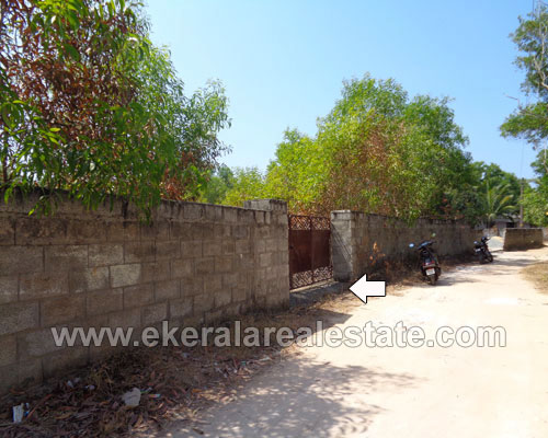 property sale in Channankara trivandrum Kaniyapuram residential land sale