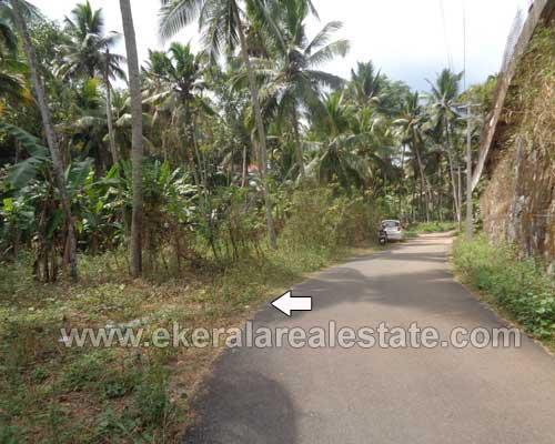 property sale in Karakulam trivandrum Karakulam residential land sale]