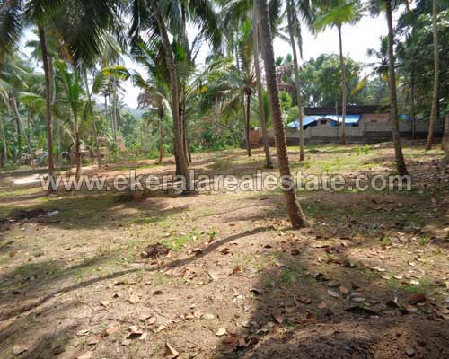 Vedivechankovil Balaramapuram thiruvananthapuram Residential land plot for sale kerala real estateVedivechankovil Balaramapuram thiruvananthapuram Residential land plot for sale kerala real estate