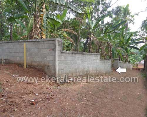 trivandrum kerala real estate Residential Land for sale at Pathamkallu Nedumangad