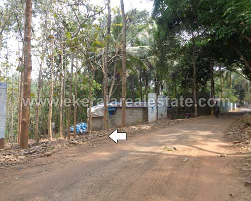 Malayinkeezhu real estate 95 cent land for sale Malayinkeezhu properties