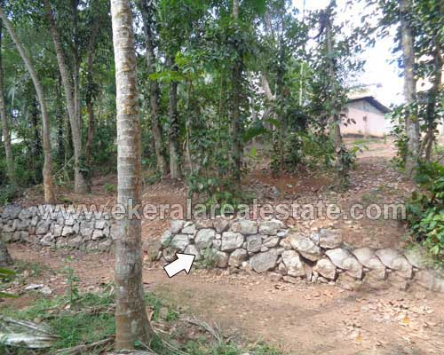 Karakulam 9 cent land plots for sale Karakulam properties trivandrum kerala
