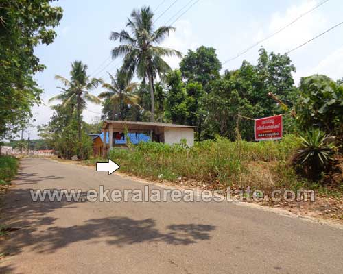 Thattathumala Kilimanoor 25 cent land plots for sale Thattathumala properties trivandrum kerala