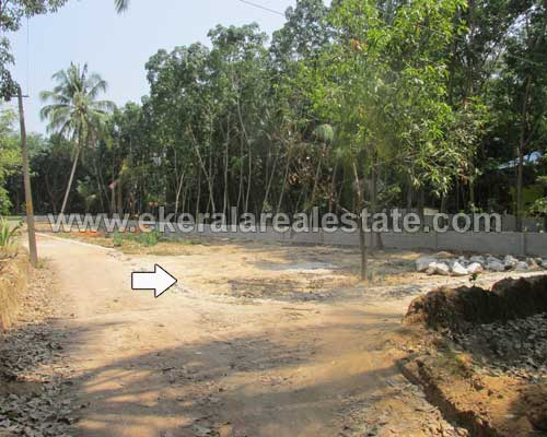 Trivandrum Real estate Kazhakuttom Properties Plot for sale Mangalapuram Trivandrum