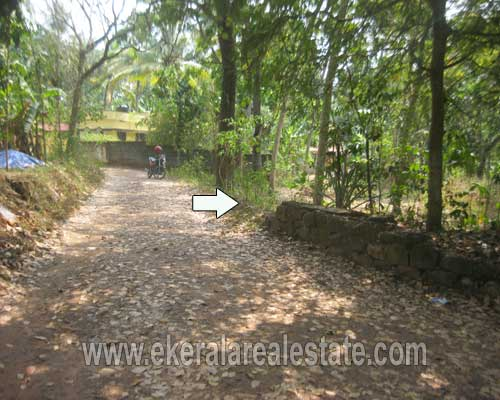 Kerala Thiruvananthapuram real estate Land and plot at Edava Varkala