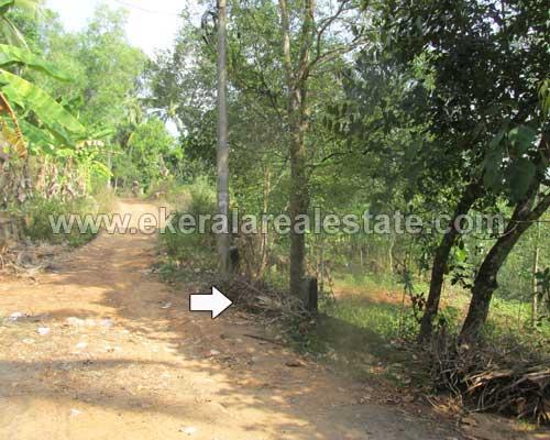 Balaramapuram land at Balaramapuram Properties Trivandrum Kerala