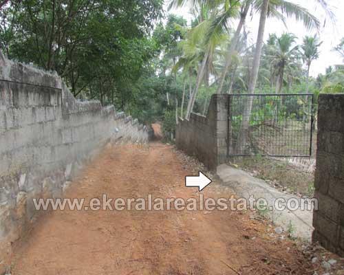 Balaramapuram Ooruttambalam residential land at Balaramapuram Properties Trivandrum Kerala
