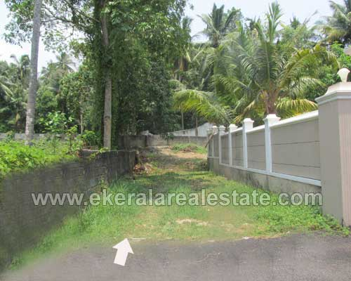 Land plot at Nalanchira Trivandrum real estate Kerala