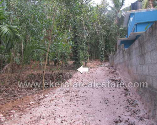 Properties in Balaramapuram land and plot for sale at Uchakkada Balaramapuram Trivandrum
