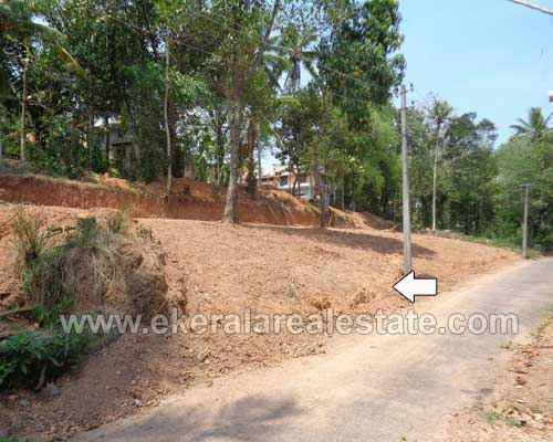 Properties in Technopark land and plot for sale at Kariavattom Technopark Trivandrum