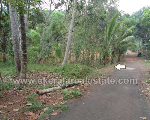 Thiruvananthapuram Real estate Properties Korani Land with 1200 Sq.ft. old house for sale