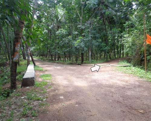 Lorry access land for sale at Pulimoodu Aryanad Trivandrum Kerala