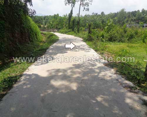 80 cents land property for sale near kalingumukku vithura for Land for sale in kerala