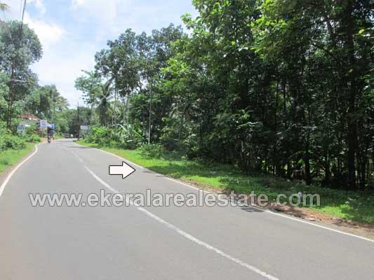 Thiruvananthapuram real estate Properties 25 cents plots in Kunnumala Nedumangad