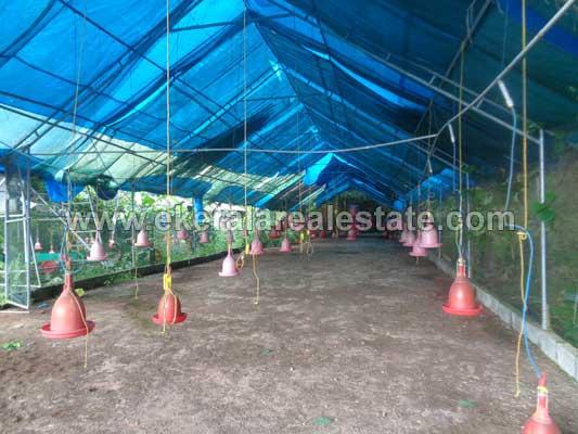 Land ideal for Farming for sale Arumaloor Kattakada Trivandrum Kerala