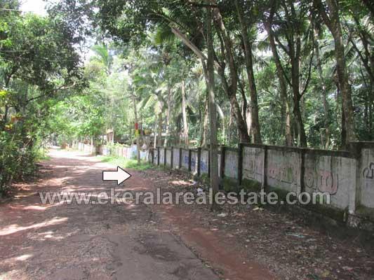 Rubber Plantation for sale in Malayinkeezhu Anthiyoorkonam Trivandrum Kerala