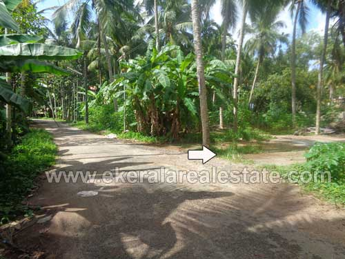 Lorry access 5 Cents land in Punnakkamugal Thirumala near Peyad Trivandrum Kerala