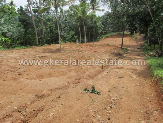 venjaramoodu thiruvananthapuram land plots sale  venjaramoodu real estate properties