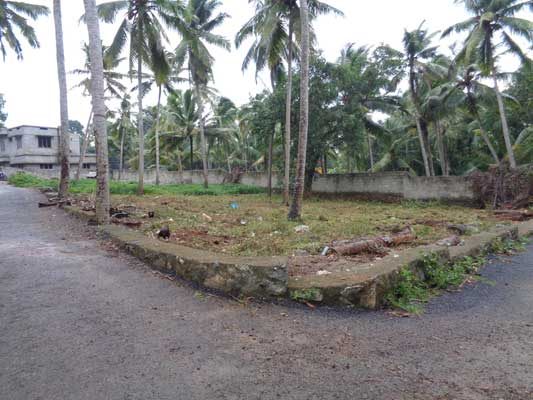 Balaramapuram Aralumoodu Trivandrum Land for sale Balaramapuram Land Properties Sale