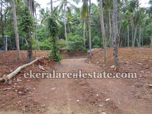 Balaramapuram Avanakuzhi  Trivandrum Land for sale Balaramapuram Land Properties Sale