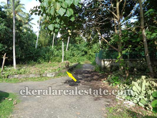 Konchiravila at Manacaud Trivandrum Land for sale Manacaud Land Properties Sale
