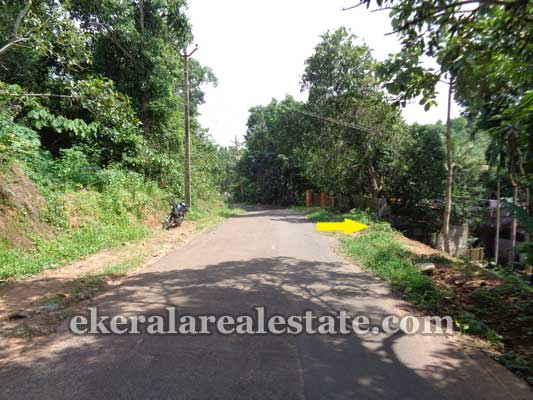 Chenkottukonam Sreekaryam Trivandrum Land for sale Sreekaryam Land properties sale