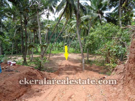 vizhinjam real estate vizhinjam Properties Residential purpose land at  vizhinjam Trivandrum
