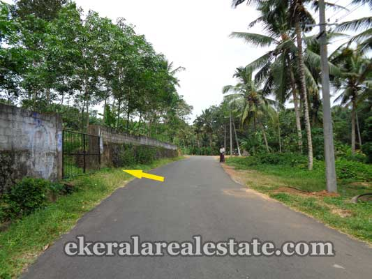 Balaramapuram real estate Balaramapuram Properties Land and plots at Balaramapuram Trivandrum