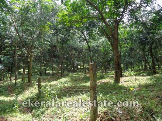 Trivandrum real estate Kerala Properties Neyyattinkara Amaravila Land Sale