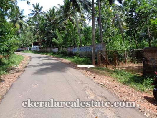 residential house plots sale in Kanjiramkulam kerala real estate trivandrum properties