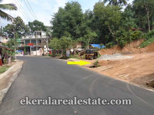 residential house plots sale in near Moongode Thachottukavu kerala real estate trivandrum properties