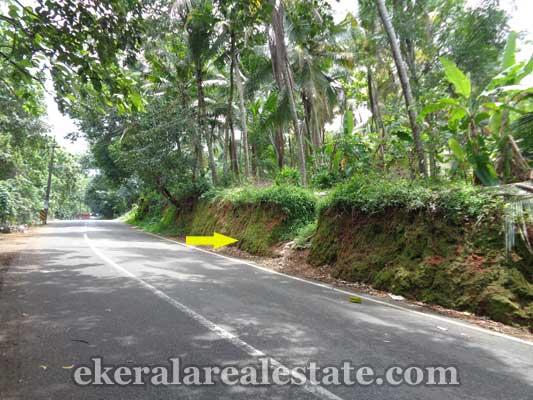 residential house plots sale in Vazhayila kerala real estate trivandrum properties