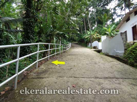 Residential land property sale in Kallayam trivandrum kerala real estate  Kallayam Properties