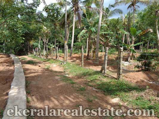 Land sale in Parassala trivandrum kerala real estate Parassala Properties