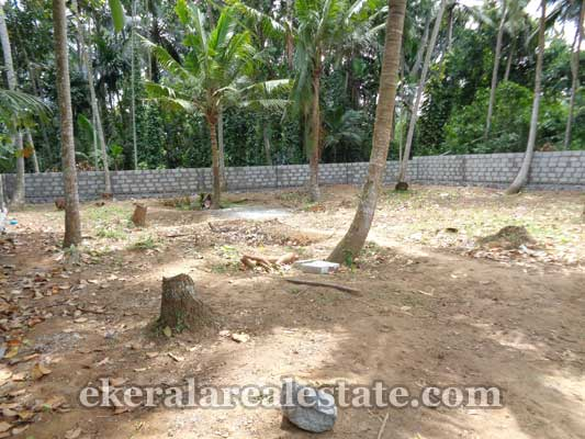 Thirumala land property for sale in trivandrum properties for Land for sale in kerala